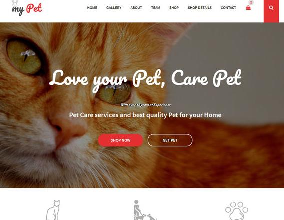 宠物猫商店电商网站模板_亿码酷站网站源码下载