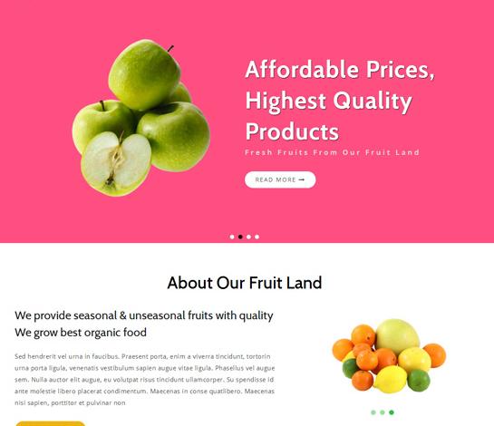 粉色新鲜水果网站销售模板_wordpress主题