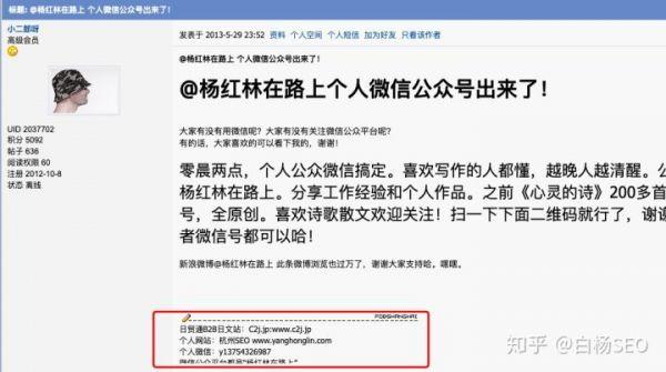 白杨SEO:网站外链怎么做?增加外链的42个技巧方法,举例_seo插图17