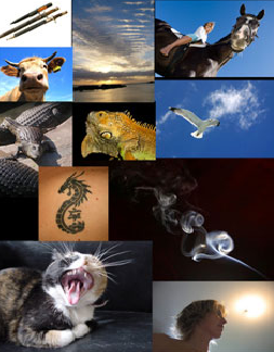 JoanCharmant的图象合成艺术_亿码酷站___亿码酷站平面设计教程插图9