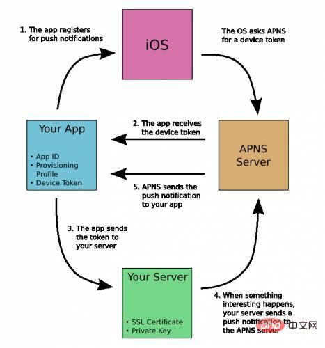 php如何实现ios推送_亿码酷站_亿码酷站插图2