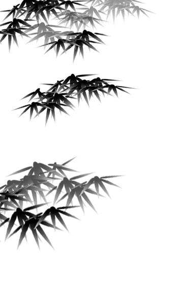 用PhotoShop画墨竹_亿码酷站___亿码酷站平面设计教程插图6