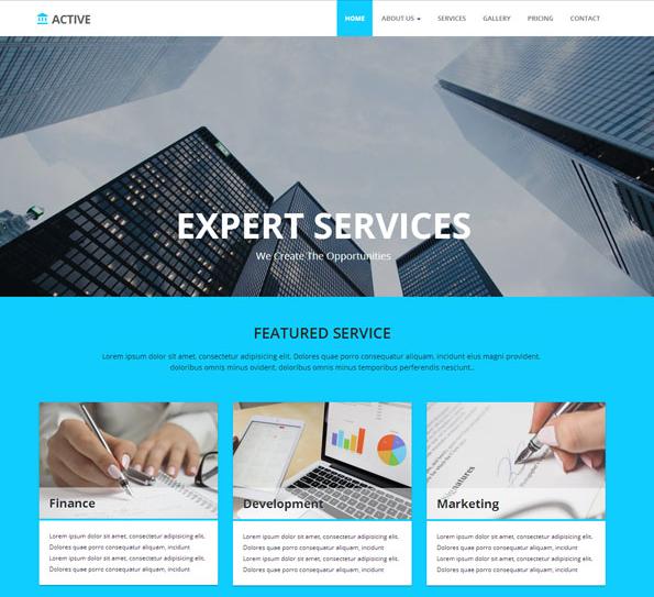 淡蓝色宽屏企业办公网站模板_html网站模板