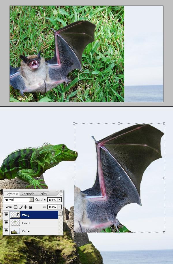 Photoshop图像合成实例:栩栩如生的翼龙_亿码酷站___亿码酷站平面设计教程插图7