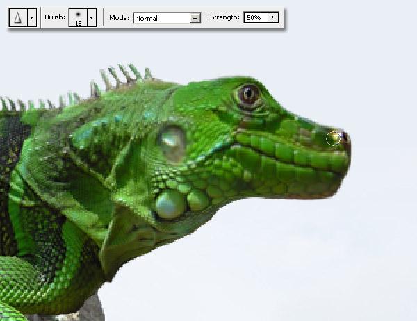 Photoshop图像合成实例:栩栩如生的翼龙_亿码酷站___亿码酷站平面设计教程插图6
