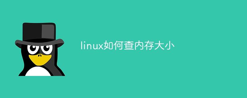 linux如何查内存大小_编程技术_编程开发技术教程