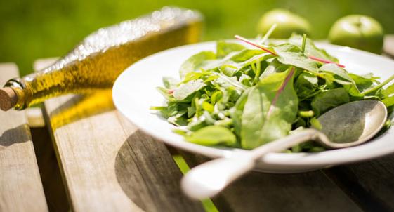 绿色大气餐馆美食网站模板_帝国cms模板