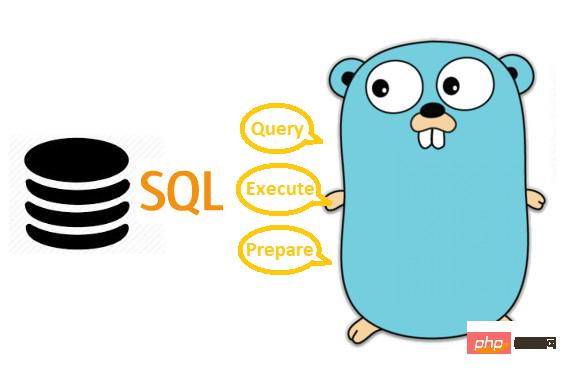 关于Go SQL中的Query、Exec和Prepare使用对比(附网络抓包)_亿码酷站_亿码酷站