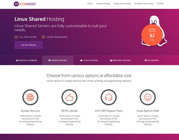 紫色主机域名注册网站模板_html网站模板