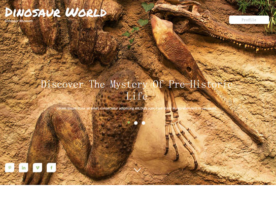 动物标本馆官方前端网站模板_亿码酷站网站源码下载