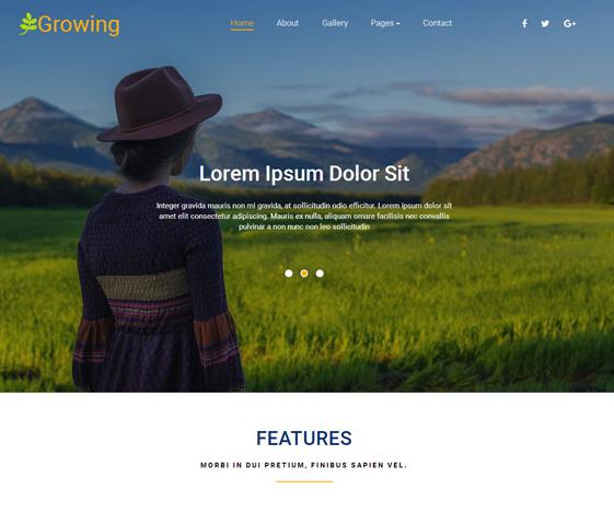 绿色水稻专业收割机构网站模板_企业官网模板