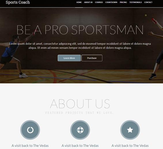 体育运动直播专题模板下载_html网站模板