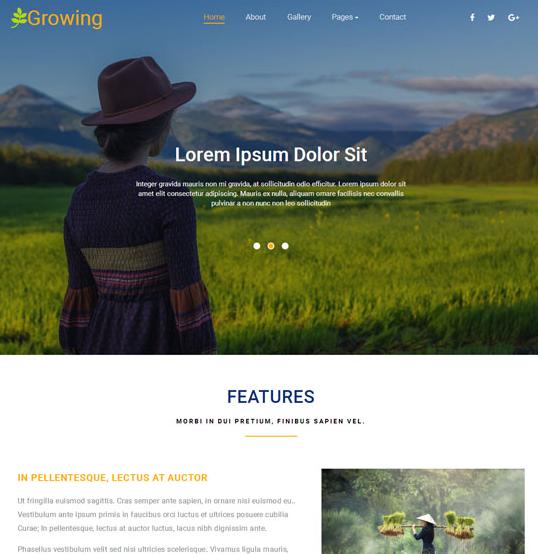 水稻收割专卖机构网站模板_html网站模板