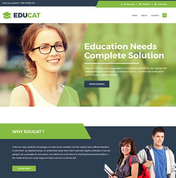宽屏响应式教育网站模板_亿码酷站网站源码下载