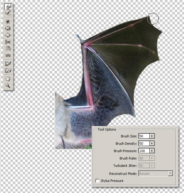 Photoshop图像合成实例:栩栩如生的翼龙_亿码酷站___亿码酷站平面设计教程插图8