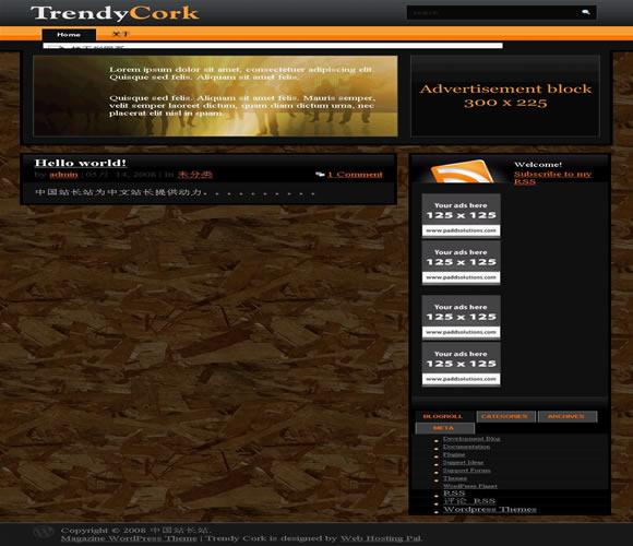 WordPress Trendy Cork模板_亿码酷站_亿码酷站